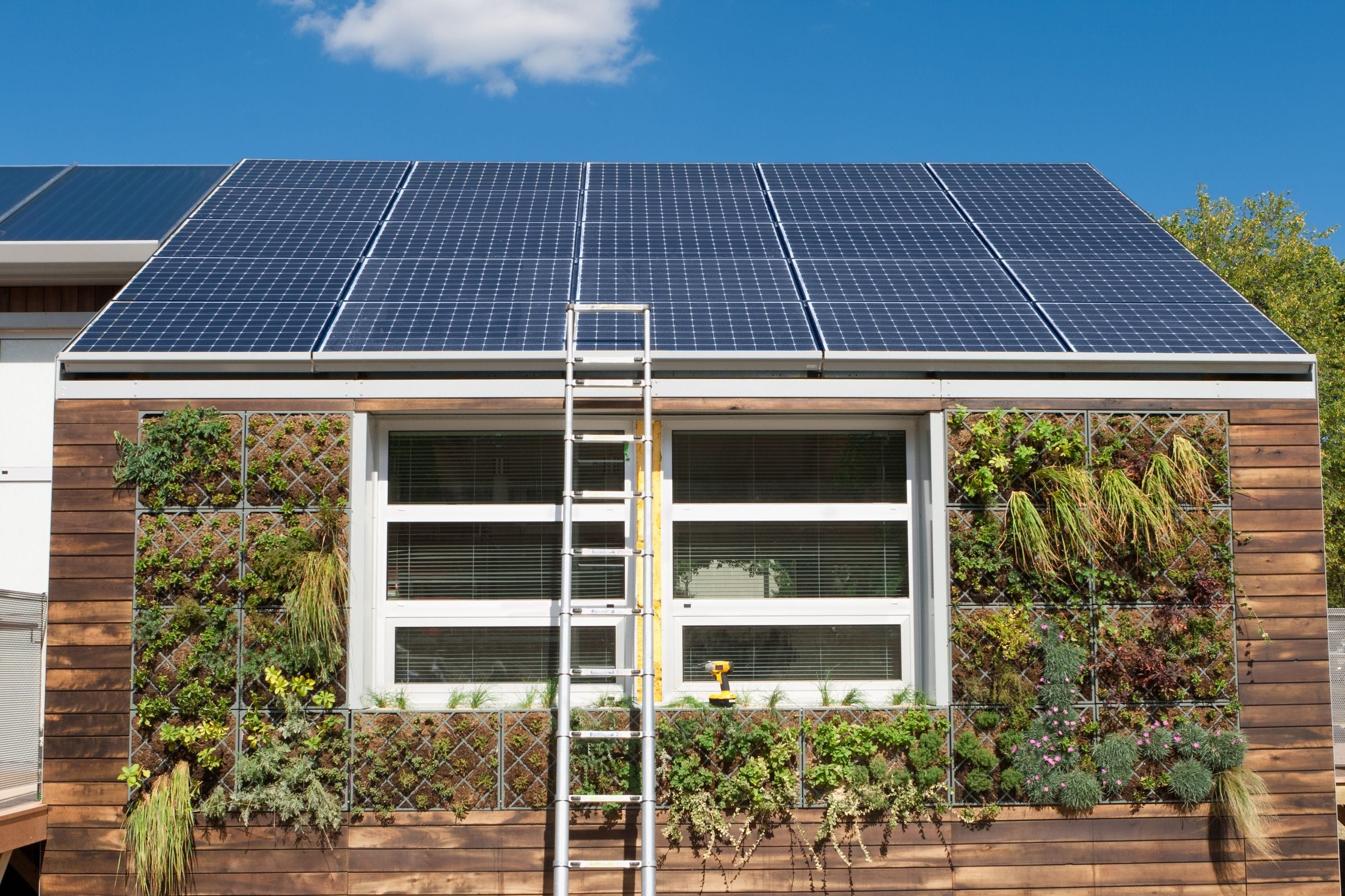 Clean, Renewable Energy At Home
